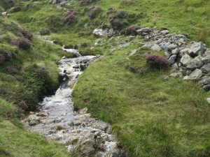 Croagh Patrick stream