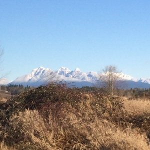 The Rocky Mountains as seen on a clear day in Langley, British Columbia
